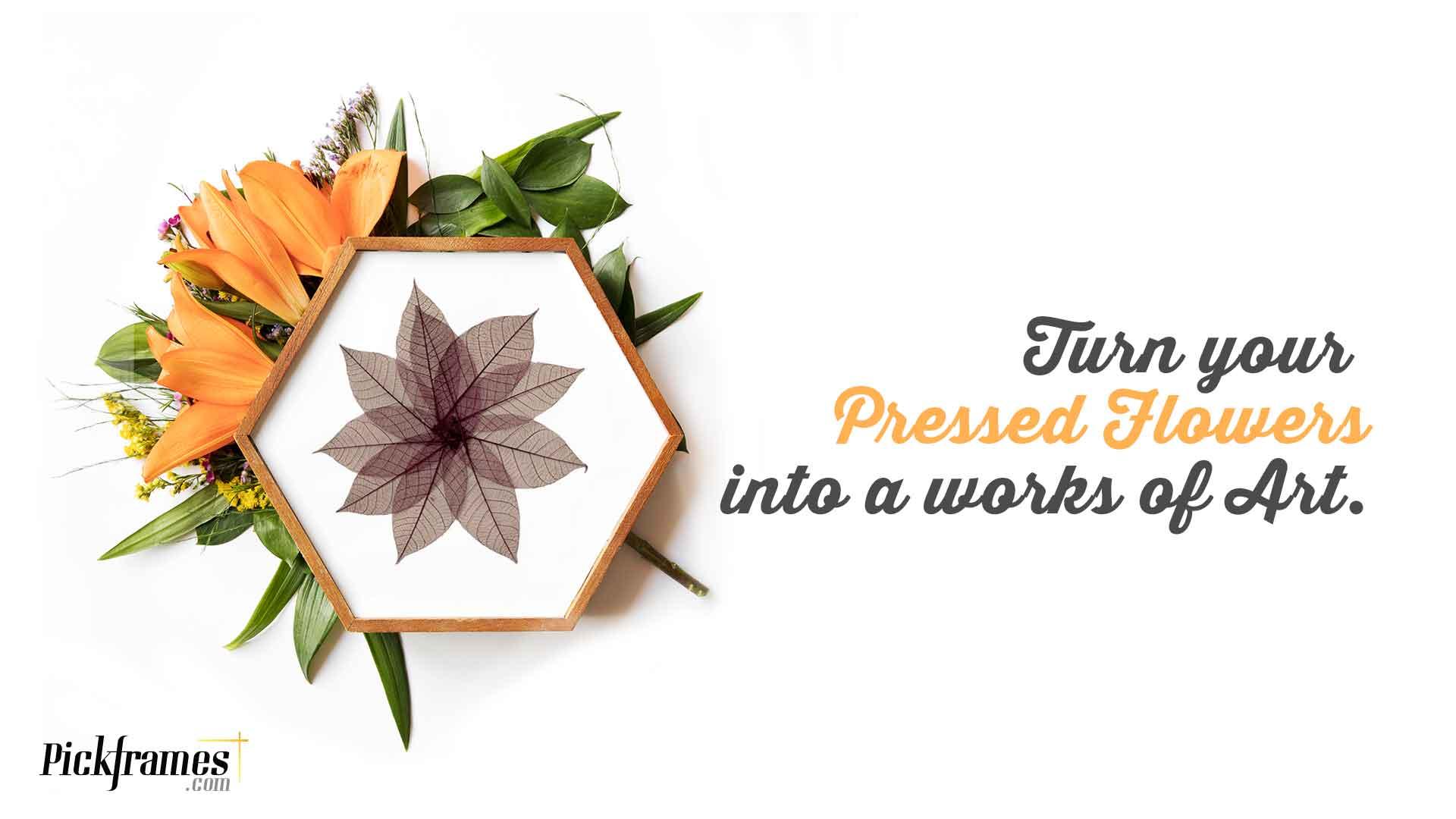 FRAMING PRESSED FLOWERS | frames in Dubai and Abu Dhabi